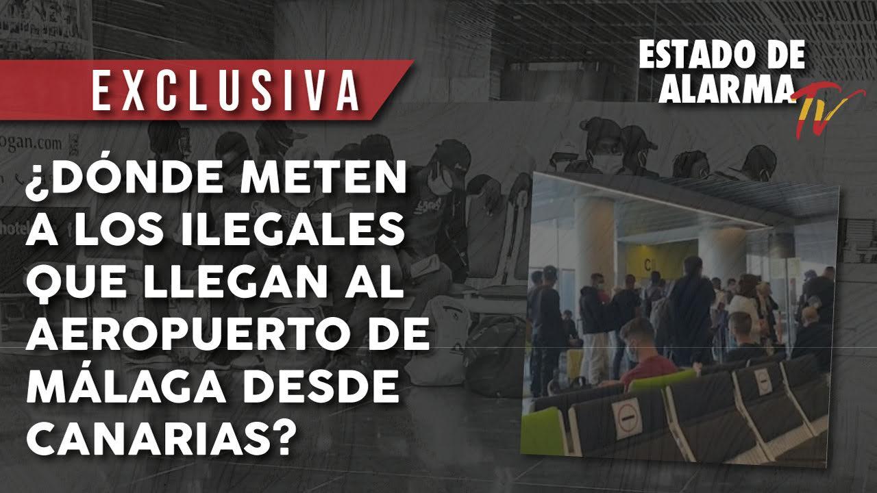 ¿Dónde meten a los ilegales que llegan al aeropuerto de Málaga desde Canarias?